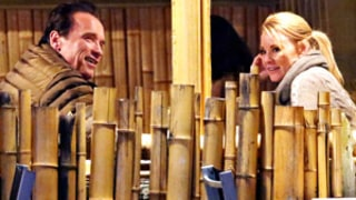 Arnold Schwarzenegger Dating Physical Therapist Heather Milligan: Report