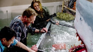 Sharknado 2 Coming in 2014, Syfy Confirms