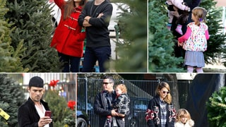 Celebrities Buying Christmas Trees