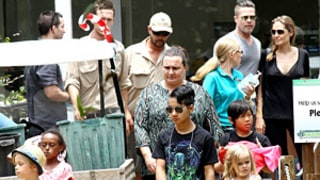 Angelina Jolie, Brad Pitt Treat Kids to a Day at the Zoo in Australia: See the Pictures!