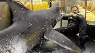Sharknado 2: Ian Ziering, Jason Priestley, Other Stars React With Hilarious Tweets