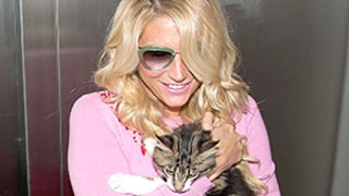 Taylor Swift, Kesha Add Cats to Their Street Style Looks—New Trend Alert?