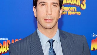David Schwimmer Now