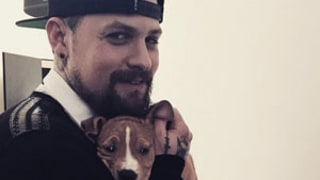 Benji Madden Sends Cameron Diaz Cute Puppy Instagram, Missing His