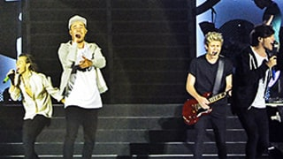 One Direction Plans Next Album Without Zayn Malik, Niall Horan