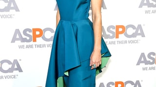 Hilary Swank: ASPCA Bergh Ball 2015