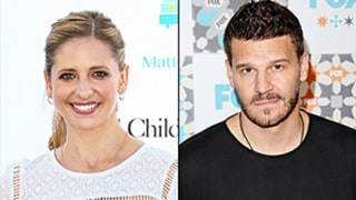 David Boreanaz Wishes Sarah Michelle Gellar a Happy Birthday, She Calls Him