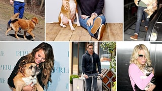 Celebs and Their Pets