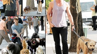 Hot Hunks Walking Dogs