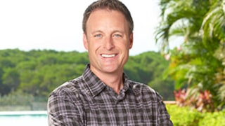 Bachelor in Paradise Is Chris Harrison's Favorite Show