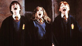 Harry Potter Director Chris Columbus Wants More Movies, 19 Years of Stories