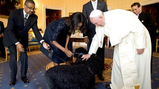 Pope Plus Puppies!