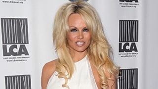Pamela Anderson Reveals She's Cured of Hepatitis C, Celebrates With Nude Pic