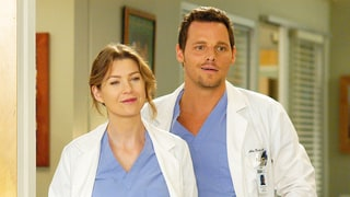 'Grey's Anatomy' Fans Think They Have Proof That Meredith and Alex Are Hooking Up: Get the Details!