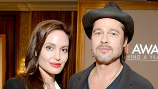 Angelina Jolie, Brad Pitt's Child Visitation Changes Monitored by Therapist: Report