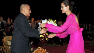 Angelina Jolie Looks Gorgeous in Hot-Pink Gown in Cambodia