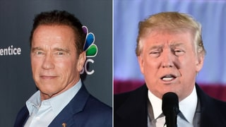 Arnold Schwarzenegger Wants Donald Trump to Be a Guest Adviser on 'Celebrity Apprentice'