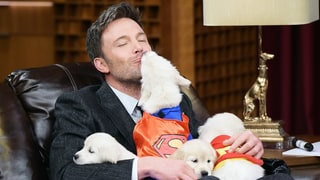 Ben Affleck Cuddles Superhero Puppies During Game of 'Pup Quiz' With Jimmy Fallon
