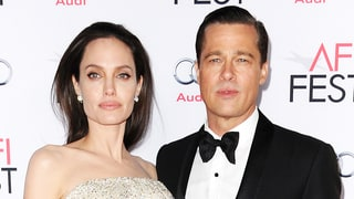 Brad Pitt Seeks Joint Custody in Response to Angelina Jolie Divorce