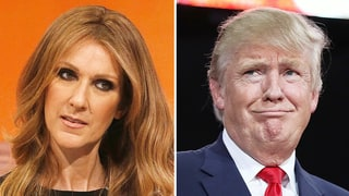 Celine Dion Reportedly Declines Donald Trump's Invite to Perform at Inauguration