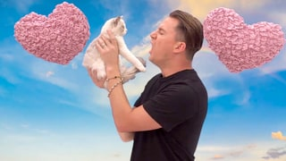 Channing Tatum Said Eight Hateful Things to a Kitten and You Must Watch