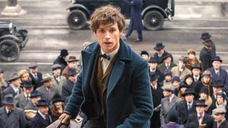 'Fantastic Beasts and Where to Find Them' Review: The Much-Awaited 'Harry Potter' Prequel Is 'Charming' and 'Entertaining'