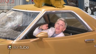 Ellen DeGeneres Calls 'Becky With the Good Hair' in Spoof of Beyonce's 'Lemonade'