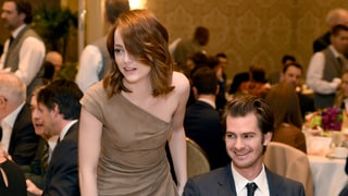 Emma Stone and Ex Andrew Garfield Were 'Very Animated and Excited' to Reunite at AFI Awards Luncheon