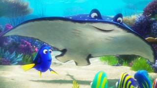 'Finding Dory' Trailer: Dory Refuses to Give Up, Reunites With Old Friend in 'Finding Nemo' Sequel