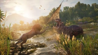 'Assassin's Creed Origins': Why Hippos Are the Game's Best Animals