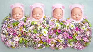 These Identical Quadruplet Baby Girls Are Growing Up Fast! See Their Adorable New Pictures