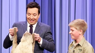 Robert Irwin, Son of the Late Steve Irwin, Freaks Out Jimmy Fallon With Sloths