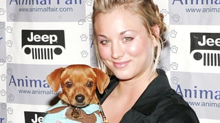 Kaley Cuoco's Dog Petey Dies: See the Touching Post