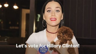 Katy Perry Enlists the Help of an Adorable Puppy to Urge Fans to Vote for Hillary Clinton