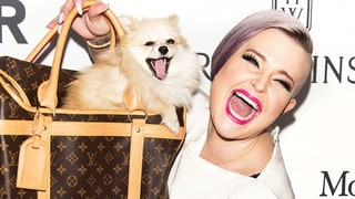Kelly Osbourne Just Brought Her Adorable Puppy as Her Red Carpet Date