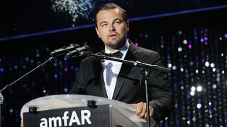 Leonardo DiCaprio's Foundation Grants $15.7 Million to Stop Climate Change, Preserve Wildlife