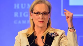 Meryl Streep Launches Epic Rant Against Donald Trump, Vows to Stand Up to 'Brownshirts'