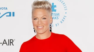 Pink Joining 'The Voice' as Guest Adviser: Details