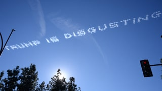 Anti-Donald Trump Messages Appear in Sky Over Rose Parade: Photos