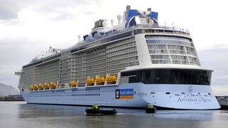 Boy in Critical Condition After Being Found in Cruise Ship Pool