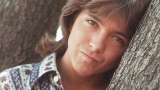 David Cassidy: Naked Lunch Box