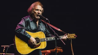 Don McLean Pleads Guilty to Domestic Violence