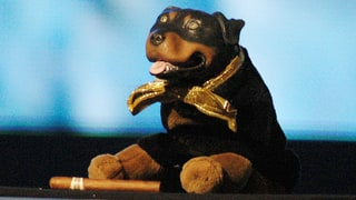 How Triumph the Insult Comic Dog Mastered the Art of Pooping on Politics