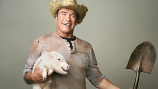Watch Arnold Schwarzenegger Soothe a Fussy Baby Pig