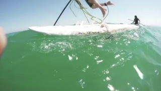 Watch: A Giant Squid Grabs a Guy's Paddle Board, Tips Him Over