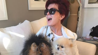 Sharon Osbourne, Kate Hudson and More Stars Celebrate Their Beloved Pooches on National Puppy Day: See the Pics!