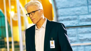 Ted Danson Is Leaving 'CSI: Cyber' — Is This the End of the Franchise?