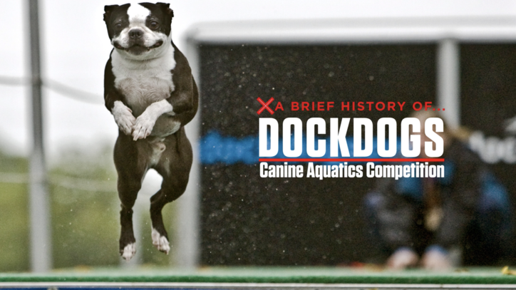 A Brief History of Competitive Dog Jumping