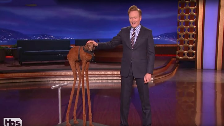 Watch Conan Heal Divided Nation With Churchill Quote, Dachshund