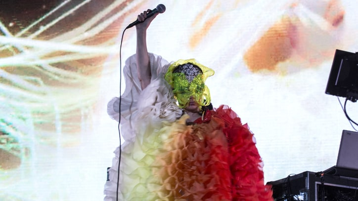 Bjork Elaborates on Danish Director's Alleged Sexual Assault